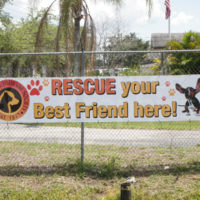 Outdoor Fence Banner -Gulf Coast Humane Society